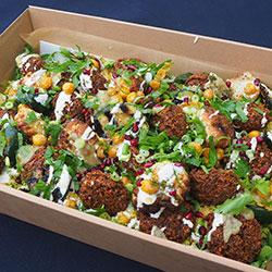 Falafel and veggie salad thumbnail