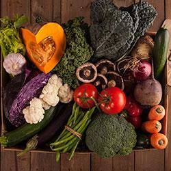 Large Market Veggie Box thumbnail