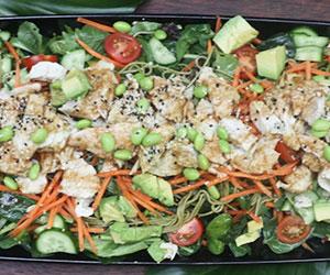 Kung fu chicken soba noodle salad thumbnail