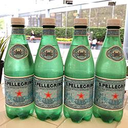 San Pellegrino sparkling water - 500ml thumbnail