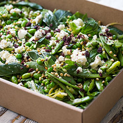 Green beans, sugar snaps, soy beans, asparagus and leek salad (Low Gluten) thumbnail