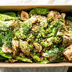 Miso salmon salad thumbnail