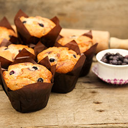 Blueberry gourmet muffin - box of 6 thumbnail
