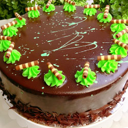 Chocolate mint ripple cake thumbnail