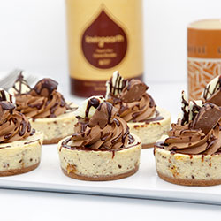 Tim Tam cheesecake - 3 inch - box of 6 thumbnail