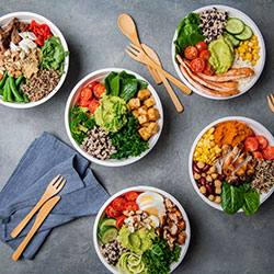 Assorted lunch bowls - mini thumbnail