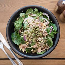 Quinoa crusader thumbnail