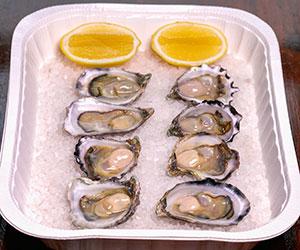 Sydney rock oysters thumbnail