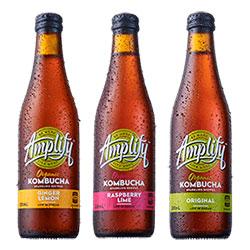 Amplify organic kombucha - 330ml thumbnail