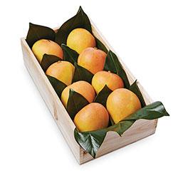 Mangoes thumbnail