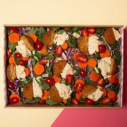 Tuscan falafel salad thumbnail