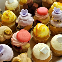 Fancy cupcakes thumbnail