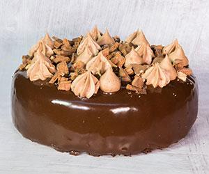 Tim Tam cake thumbnail