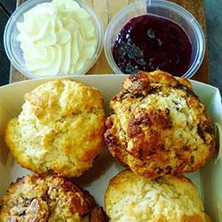 Fresh baked scones thumbnail