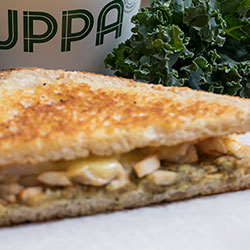 Grilled sandwiches thumbnail